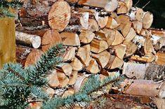Πότε κόβουμε ξύλα http://ift.tt/2glDbab