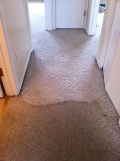 Dirty hallway rental duplex-port moody carpet cleaning