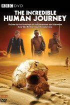 Incredible Human Journey, The on DVD from BBC Home Video. More International, European and Documentary DVDs available @ DVD Empire. Human Family Tree, Bbc, Journey, Story Of The World, First Humans, Travel Channel, Family Movies, Film Music Books, Best Tv Shows