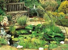 how to take care of koi fish pond Koi pond maintenance is essential in keeping your pond healthy and Koi ponds are a gorgeous focal point for any outdoor space Koi Fish For Sale, Pond Maintenance, Koi Fish Pond, Japanese Koi, Keeping Healthy, True Beauty, Places, Outdoor, Beautiful