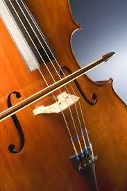 instruments de corda - Buscar con Google