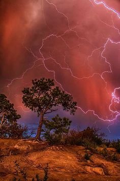 """Top 10 Weather Photographs: """"Hair Raising Colorado Lightning"""" – This was a bit hair raising. Lightning in Colorado Springs, CO All Nature, Science And Nature, Amazing Nature, Beautiful Sky, Beautiful World, Le Colorado, Colorado Springs, Cool Pictures, Beautiful Pictures"""