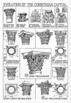 Architectural Orders: Corinthian order, reconstruction details