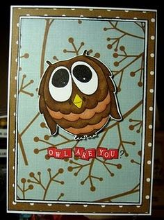 Owl's are adorable <3