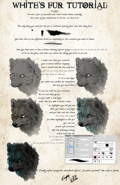 .:White's Fur Tutorial:. by =WhiteSpiritWolf on deviantART