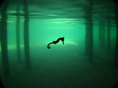 Caballo de mar, Honduras    Fotografía de Marc Mistersaro    Ensorqueleando debajo de un club nocturno en Roatán, Honduras, el fotógrafo capturó esta imagen etérea de un caballito de mar. El esnórquel y el buceo rodeado de hermosos arrecifes de coral atrae a los visitantes a la mayor de las Islas Bay de Honduras.
