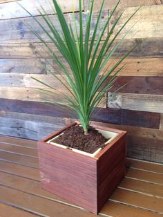 Up cycled jarrah timber into planter. - nailed it! Upcycle, Planters, Nails, Upcycling, Ongles, Repurpose, Finger Nails, Planter Boxes, Plant
