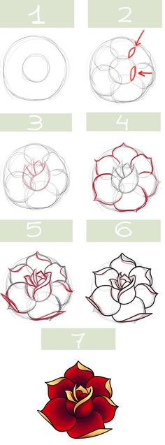 Traditional rose drawing step-by-step instruction chart.:
