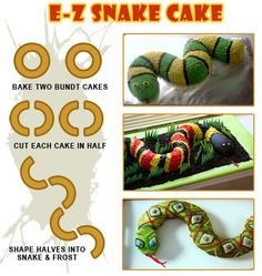 Birthday Party Ideas Atlanta | My Reptile Guys