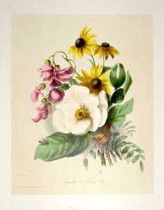 Champin Bouquets