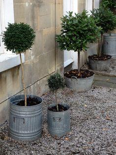 Dustbin planters