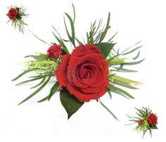 profitez de 20 de r duction avec le code 20stab sur toute la rubrique fleurs ternelles http. Black Bedroom Furniture Sets. Home Design Ideas