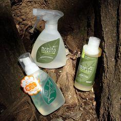 食器洗剤「森と」の販売をはじめました。スプレータイプ、泡ボトルタイプ、詰替用濃縮タイプの3つです。毎日の食器洗いを環境に優しく、青森ヒバの香りで気持ち良く洗えます!