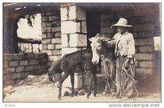 RP, Typical Mexican Boy Beside Two Donkeys, Mexico, 1920-1940s Item number: 166533619  - Delcampe.com