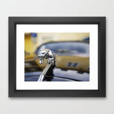 Jaguar Framed Art Print by Rainer Steinke - $40.00