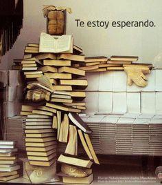 libros y biblioteca te esperan- www.vinuesavallasycercados.com