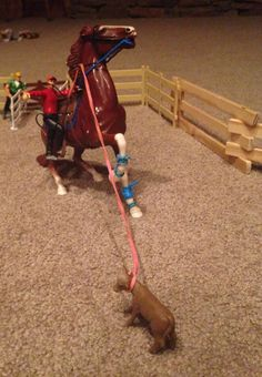 Blue and Patriot (Blue is the rider and patriot is the horse)