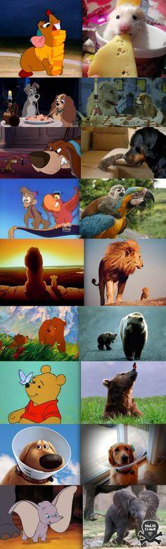 Disney X Real life