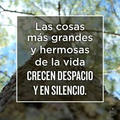 Advice Quotes, True Quotes, Best Quotes, Spanish Words, The Ugly Truth, Life Words, Positive Thoughts, Better Life, How To Dry Basil