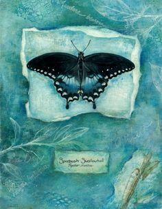 "© Jennifer Berry 2006 ""Spicebush Swallowtail Butterfly"" 14x10"" mixed media"