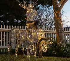 Outdoor Holiday Decorations: Reindeer in the front yard