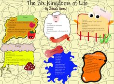 science five kingdoms worksheets | Life Worksheet, , Five Kingdoms of Classification Worksheet, 5 Kingdom ...