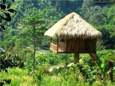 Jungle Hut between the coast and Kep National Park, Cambodia