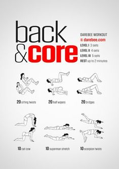 Back and Core Workout | Posted by: CustomWeightLossProgram.com