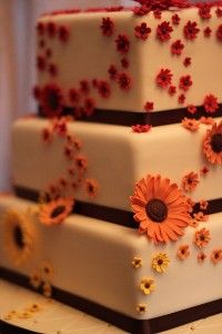 Black-eyed Susan cake, simple but pretty