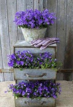 Repurpose old dresser or chest of drawers into a fun and functional planter