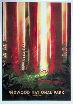 Mount Rainier National Park, Joshua Tree National Park, Rocky Mountain National Park, National Park Posters, National Parks, Nicolas Delort, Us Park, Theodore Roosevelt National Park, Beautiful Posters