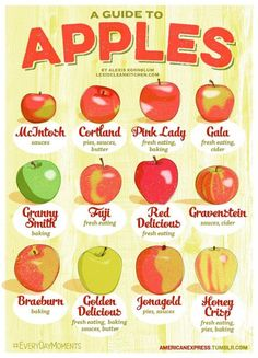 Healthy Food Friday: Guide To Eating And Baking With Apples (Cortland Apple Recipes) Apple Recipes, Fall Recipes, Rice Recipes, Thanksgiving Recipes, Recipies, Lexi's Clean Kitchen, Kitchen Tips, Apple Hand Pies, Cuisine Diverse