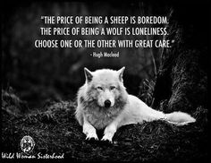 The price offering a sheep is boredom. The price of being a wolf is lonliness. Choose one or the other with great care. -Hugh Macleod #wildwomansisterhood™ WILD WOMAN SISTERHOOD™