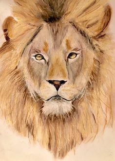 Pastellkreide und Buntstifte Realistic Drawings, Love Drawings, Lion, Animals, Colouring Pencils, Leo, Animales, Animaux, Lions