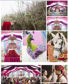 Ceremony & Baraat