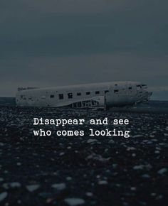 DISAPPEAR AND SEE
