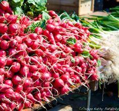 Farmer's Market color lust: Radishes