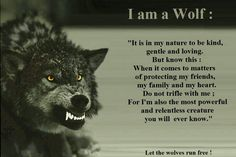 "Not all ""wolves"" are bad. The protector. Life's pain provides the fire to face anything in the protection of others. A calling."
