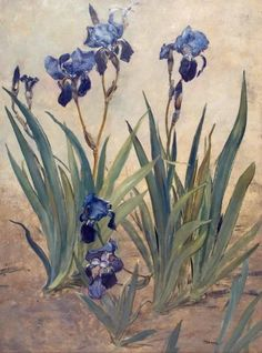 Rudolf Ribarz -  Austrian,1848-1904. Irises (one side of a two-sided fire screen) Victoria and Albert Museum.