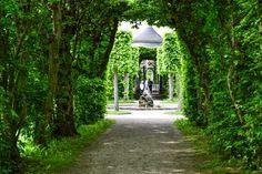 Grüne Tunnel verbinden Gartenräume im Rokokogarten  ... #twowomo #veitshöchheim #park
