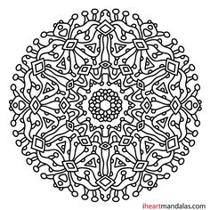 Detailed Flower Coloring Pages - Bing images