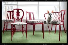 Unify different chairs by painting and upholstering them all the same.
