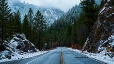 Tree Hd Wallpaper, Winter Wallpaper, Forest Wallpaper, Beach Wallpaper, Travel Wallpaper, Nature Wallpaper, Forest Mountain, Forest Road, Forest Park