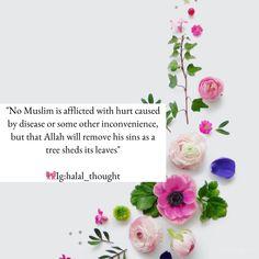 Muslim Quotes, Hindi Quotes, Islamic Quotes, Oh Allah, Quran Verses, Holy Quran, Alhamdulillah, It Hurts, Religion