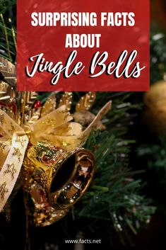 You will utterly surprised when you read about these Facts about Jingle Bells! Check them out here. Christmas Facts, Christmas Truce, Christmas Trivia, Grinch Stole Christmas, Twelve Days Of Christmas, A Christmas Story, Christmas Carol, First Christmas, White Christmas