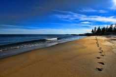 Wave 3 Reid State Park Maine by Arlo West, via Flickr