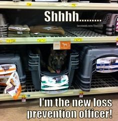 shhhhh.. Im the new loss prevention officer!