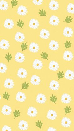 Daisies wallpaper Iphone - Best of Wallpapers for Andriod and ios Daisy Wallpaper, Spring Wallpaper, Cute Pastel Wallpaper, Flower Phone Wallpaper, Soft Wallpaper, Cute Patterns Wallpaper, Iphone Background Wallpaper, Aesthetic Pastel Wallpaper, Kawaii Wallpaper