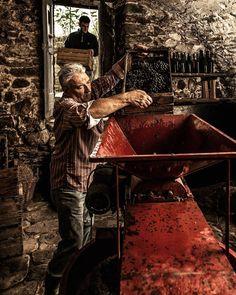 Oltrepò pavese / la Pigiatura dopo la vendemmia #oltrepopavese #oltrepo #vendemmia #varzi #cantina #winery #italy #rurallife #vino #ig_rural #pavia