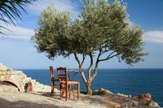 Monemvasia Outdoor Chairs, Outdoor Furniture Sets, Outdoor Decor, Monemvasia Greece, Fish Farming, Planet Earth, The Good Place, Beautiful Places, Scenery